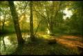 Peisaje - Verde patrunzator