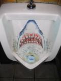 Diverse - Design cu  rechin
