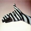 Artistice - Zebra